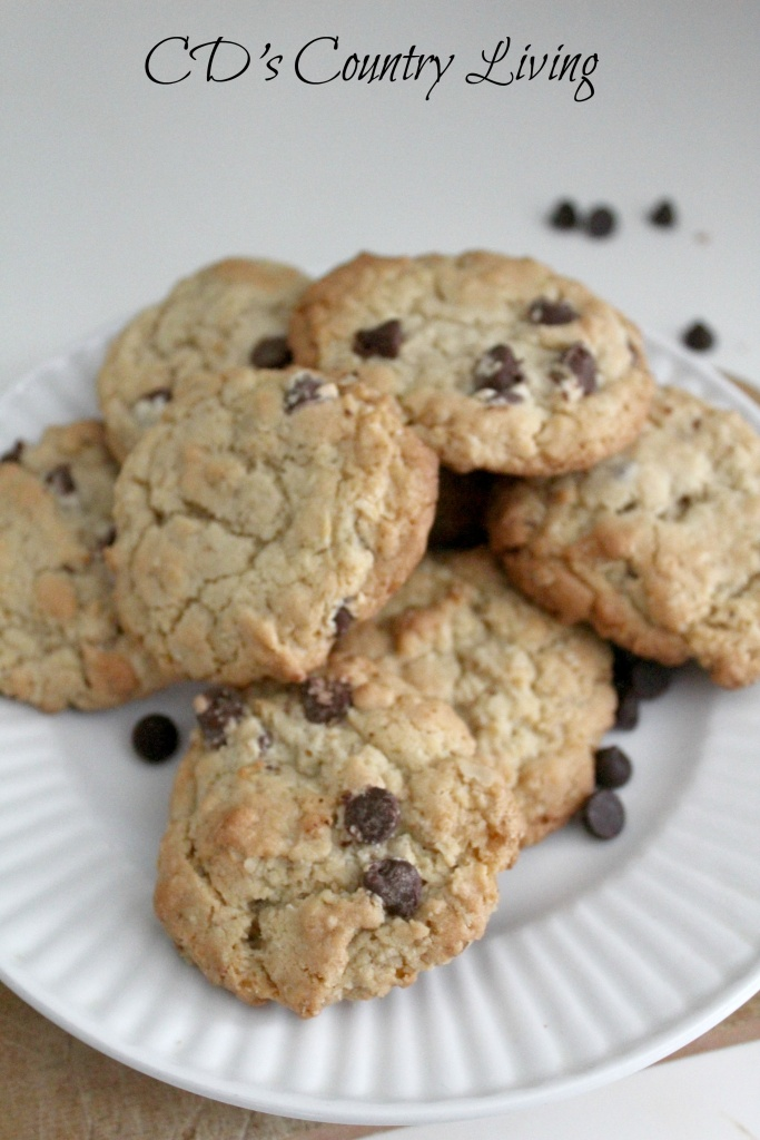 Oatmeal Chocolate Chip Cookies1
